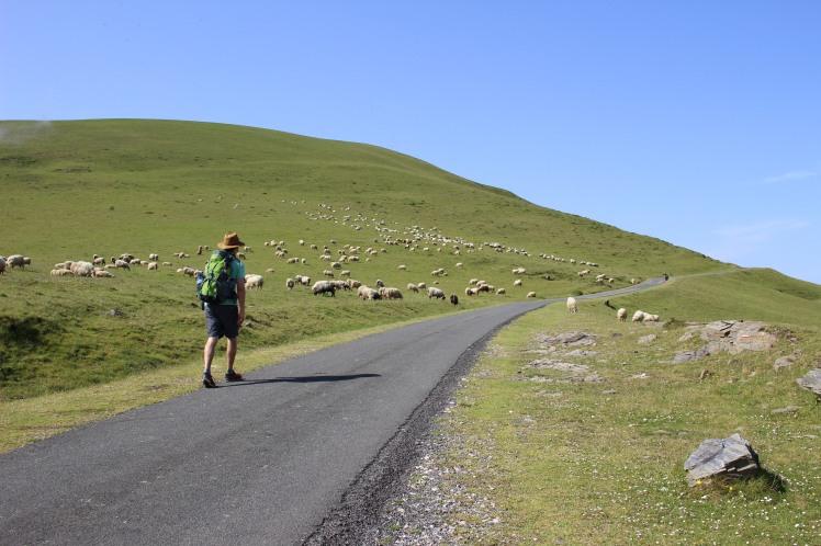 Day 1 Camino de Santiago