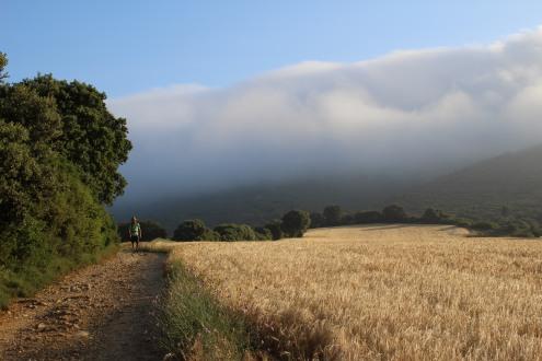 Descent from Clouds Camino de Santiago