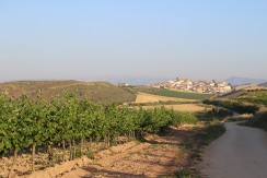 Typical Village Nearing Rioja