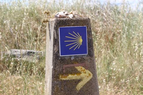 Camino Trail Marker