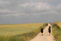 Pilgrims Make Their Way