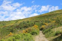 Trail Galician Mountains