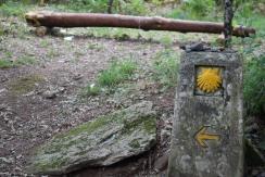 Trail Marker Galicia